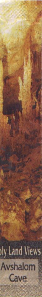 55/H/1167/18446.jpg